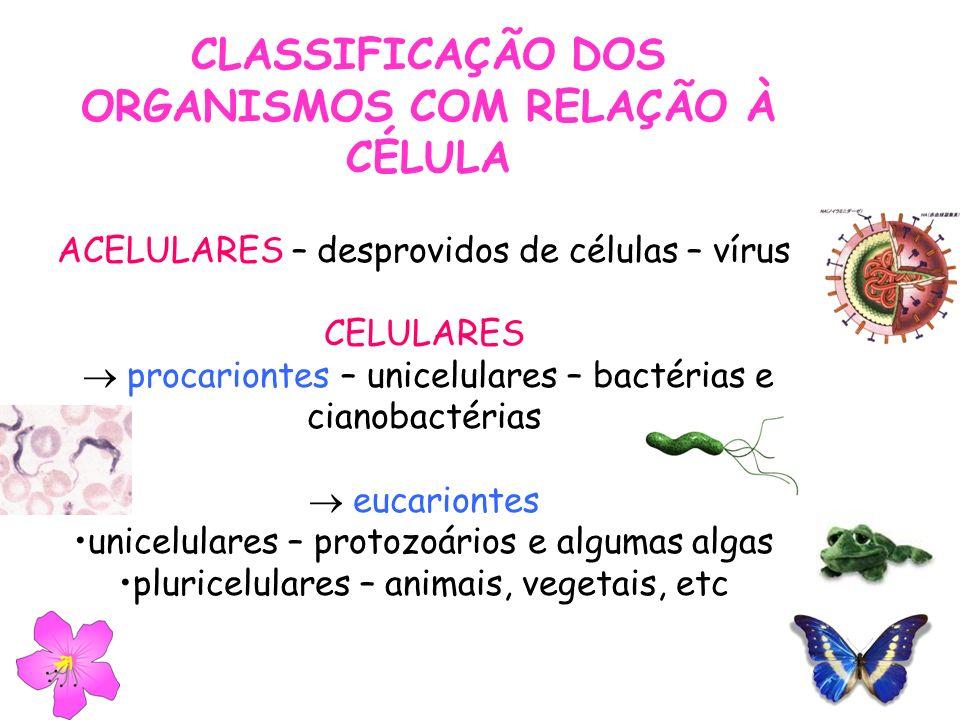 CLASSIFICAÇÃO DOS ORGANISMOS COM RELAÇÃO À CÉLULA