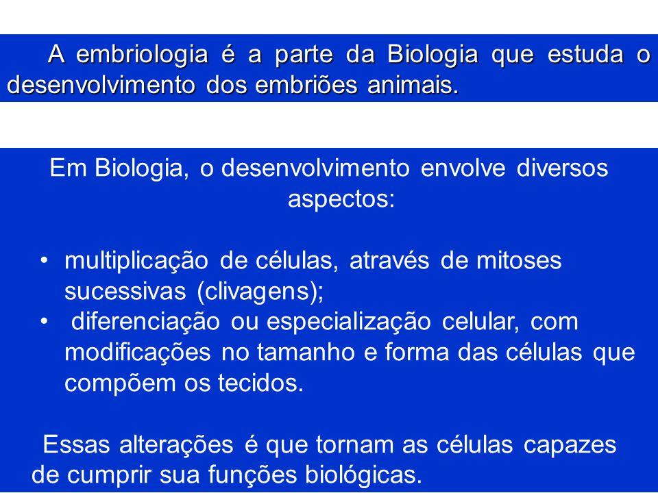 Em Biologia, o desenvolvimento envolve diversos aspectos: