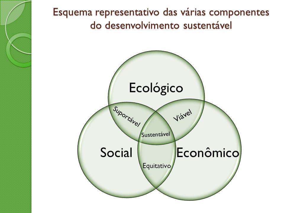 Ecológico Social Econômico