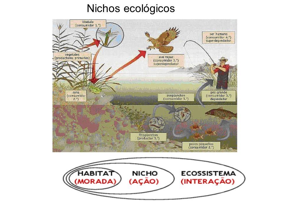 Nichos ecológicos