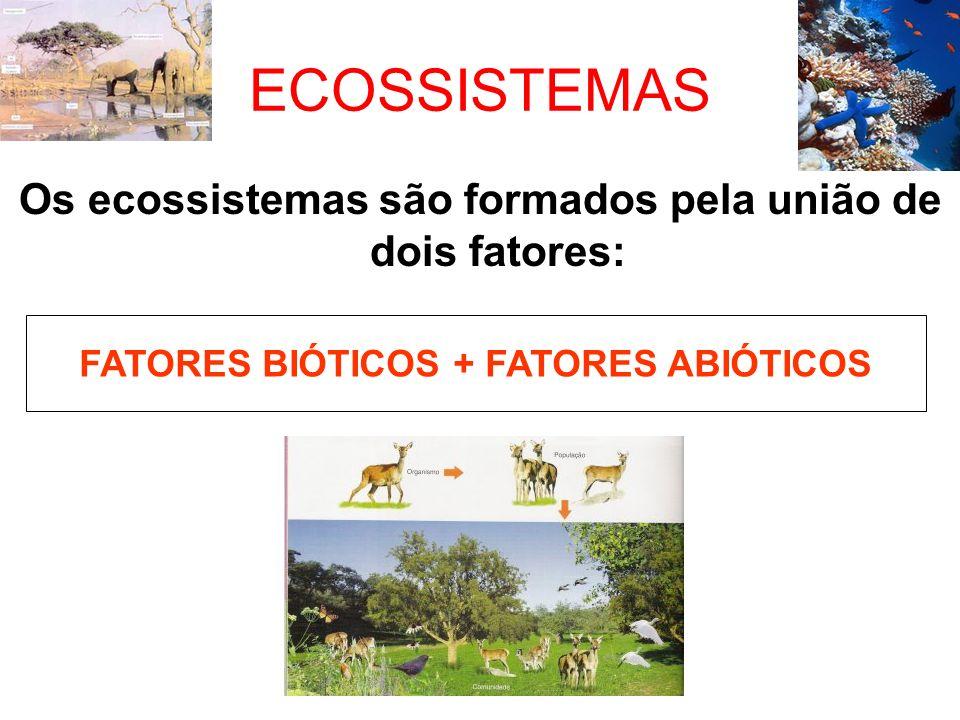 ECOSSISTEMAS Os ecossistemas são formados pela união de dois fatores: