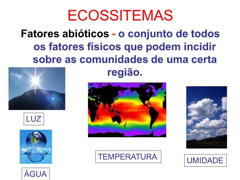 ECOSSITEMAS Fatores abióticos - o conjunto de todos os fatores físicos que podem incidir sobre as comunidades de uma certa região.