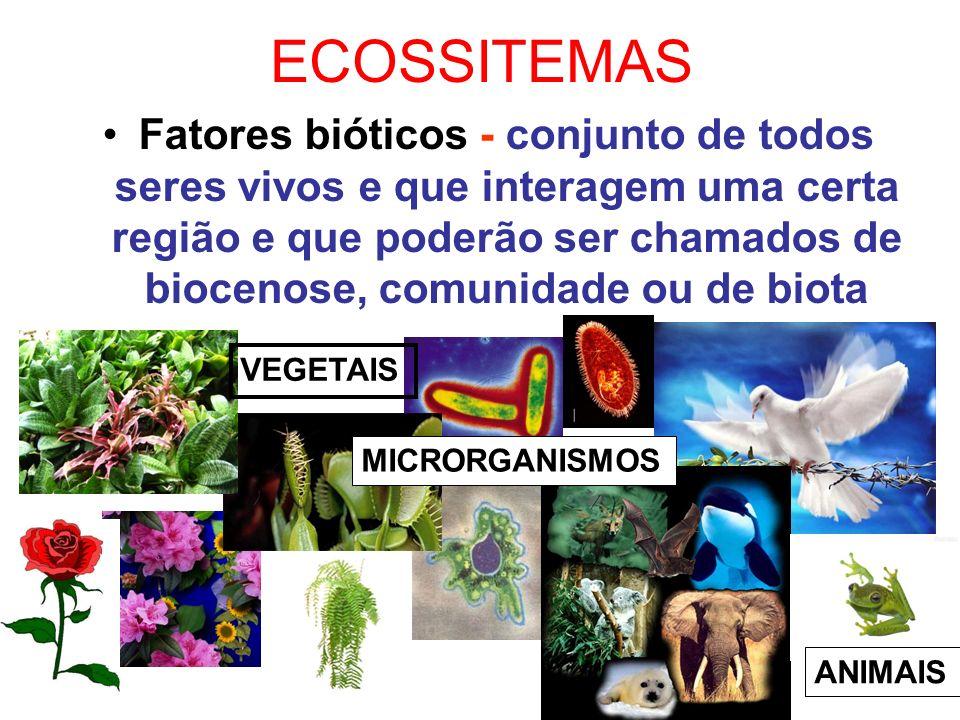 ECOSSITEMAS