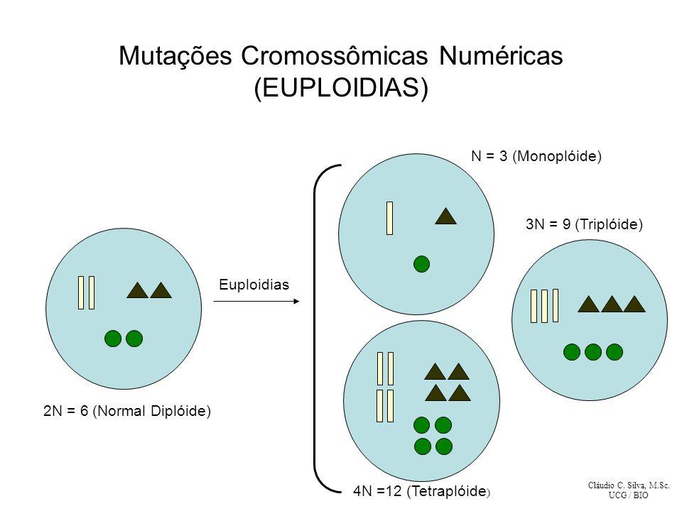 Mutações Cromossômicas Numéricas (EUPLOIDIAS)