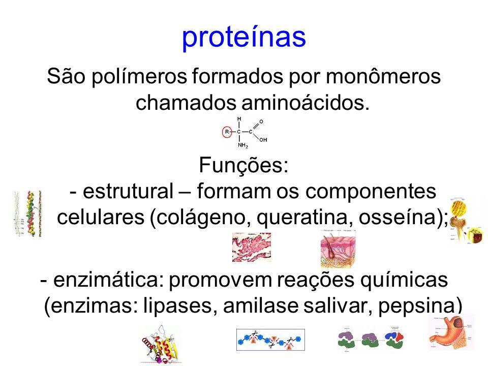 São polímeros formados por monômeros chamados aminoácidos.