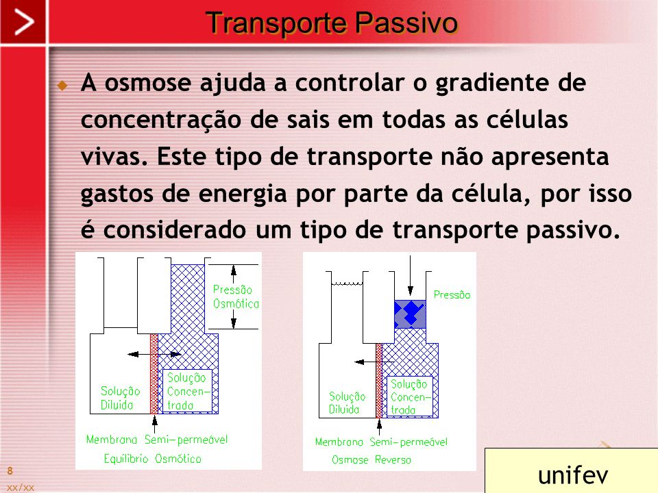Transporte Passivo