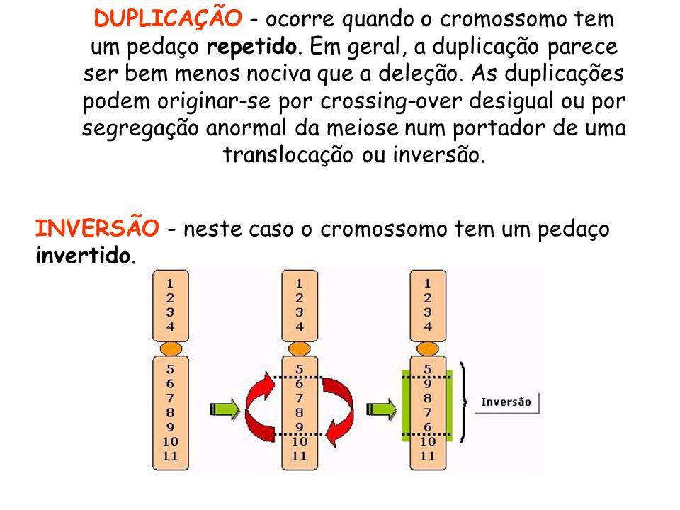 DUPLICAÇÃO - ocorre quando o cromossomo tem um pedaço repetido