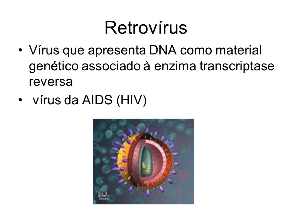 Retrovírus Vírus que apresenta DNA como material genético associado à enzima transcriptase reversa.