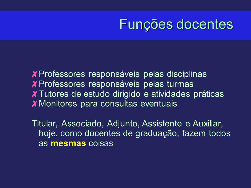 Funções docentes Professores responsáveis pelas disciplinas