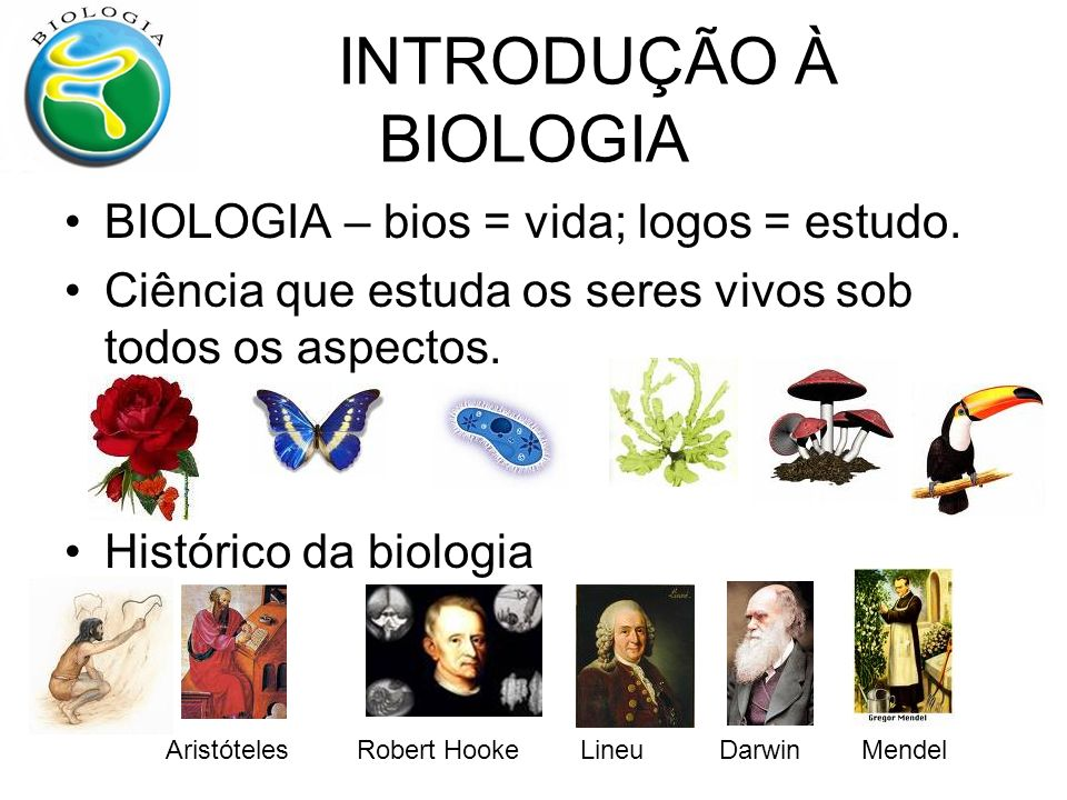 INTRODUÇÃO À BIOLOGIA BIOLOGIA – bios = vida; logos = estudo.