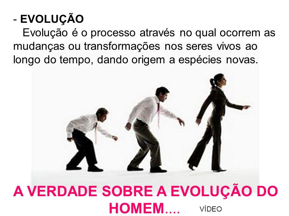 A VERDADE SOBRE A EVOLUÇÃO DO HOMEM....