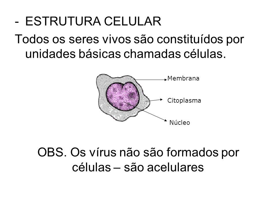 OBS. Os vírus não são formados por células – são acelulares