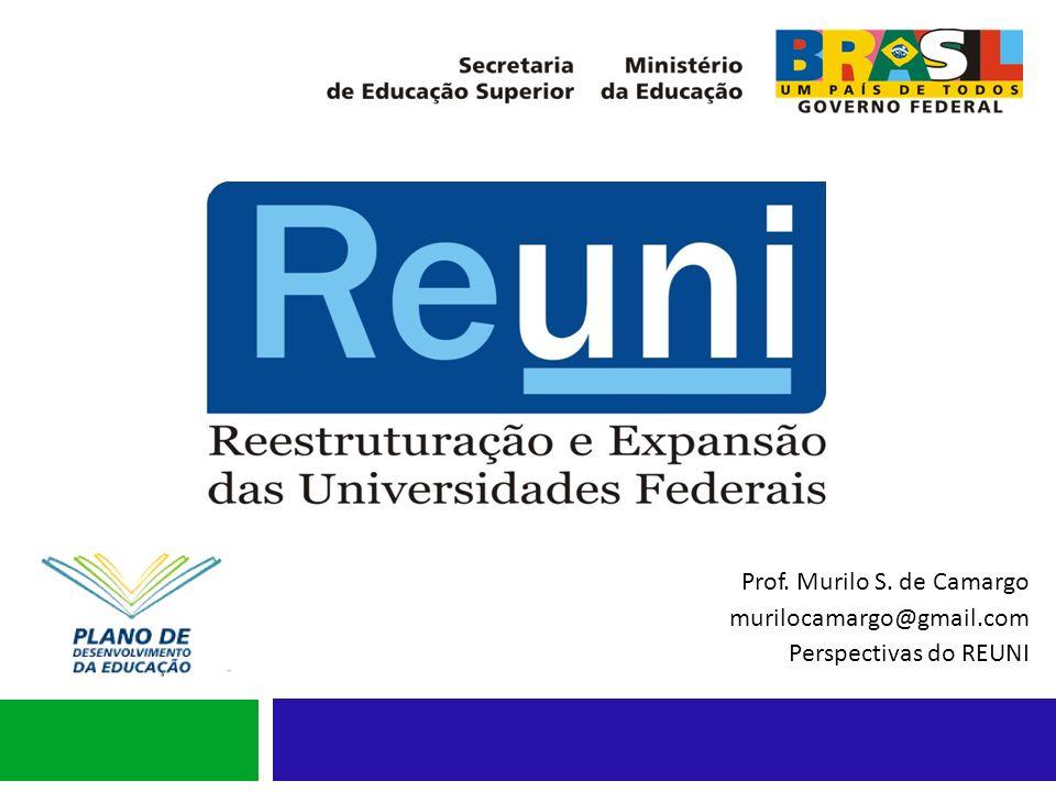 Prof. Murilo S. de Camargo