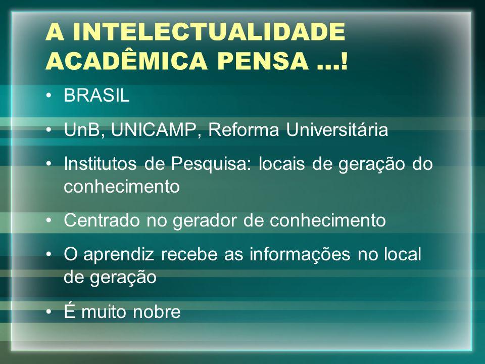 A INTELECTUALIDADE ACADÊMICA PENSA ...!