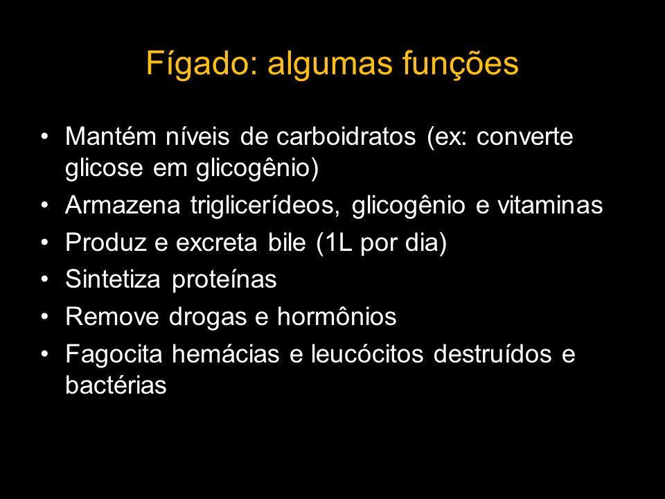 Fígado: algumas funções