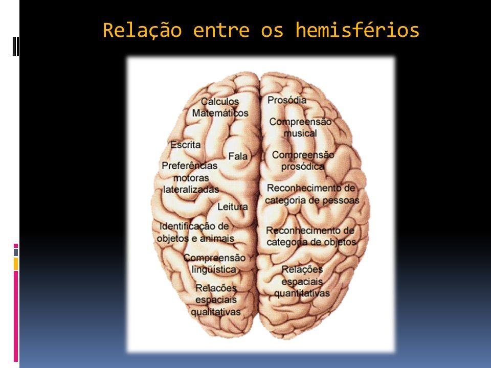 Relação entre os hemisférios