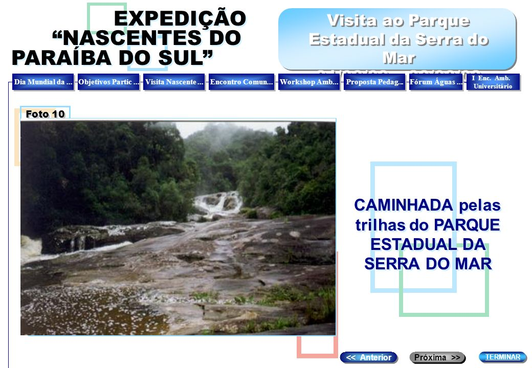 CAMINHADA pelas trilhas do PARQUE ESTADUAL DA SERRA DO MAR