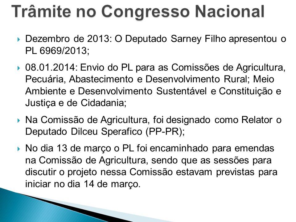 Trâmite no Congresso Nacional