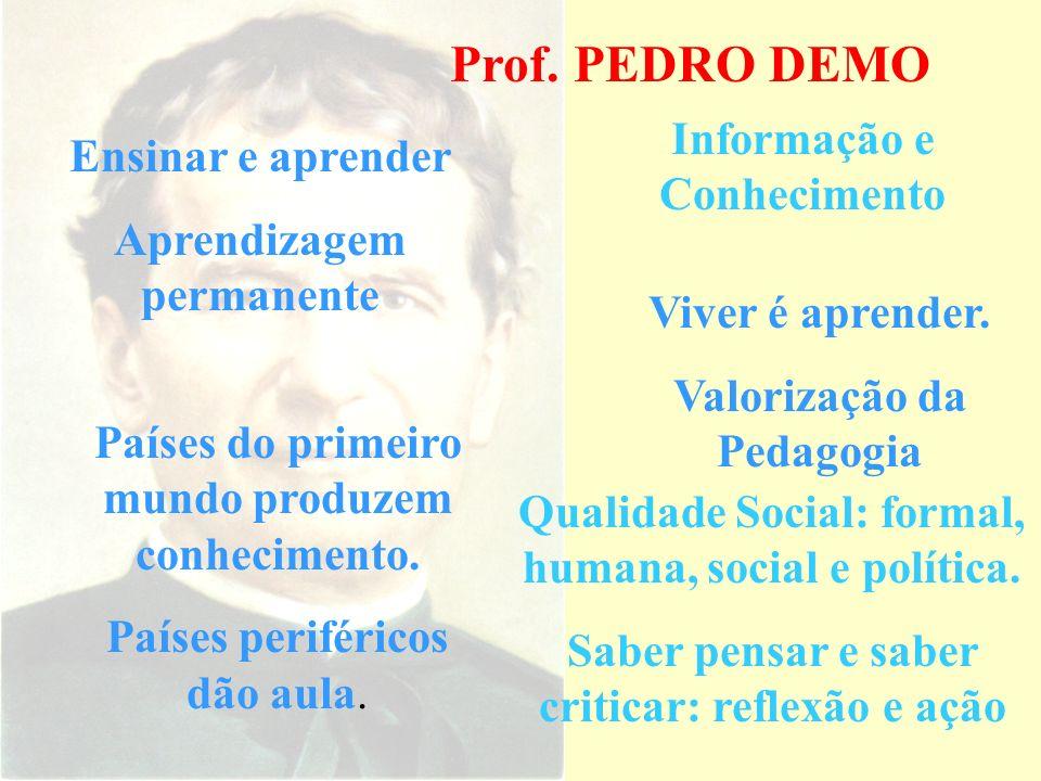 Prof. PEDRO DEMO Informação e Conhecimento Ensinar e aprender