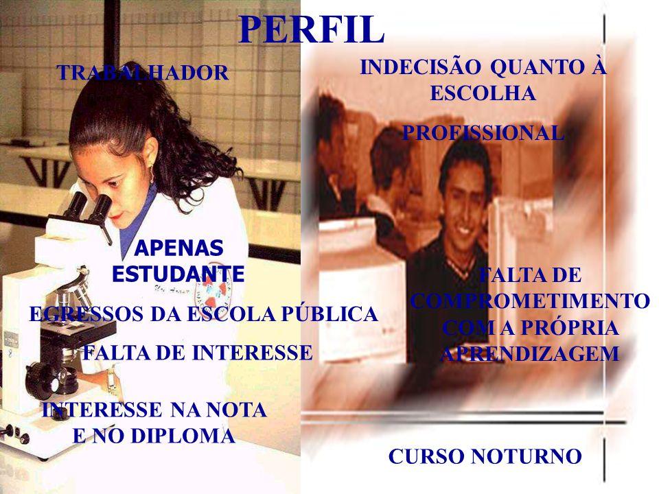 PERFIL INDECISÃO QUANTO À ESCOLHA TRABALHADOR PROFISSIONAL