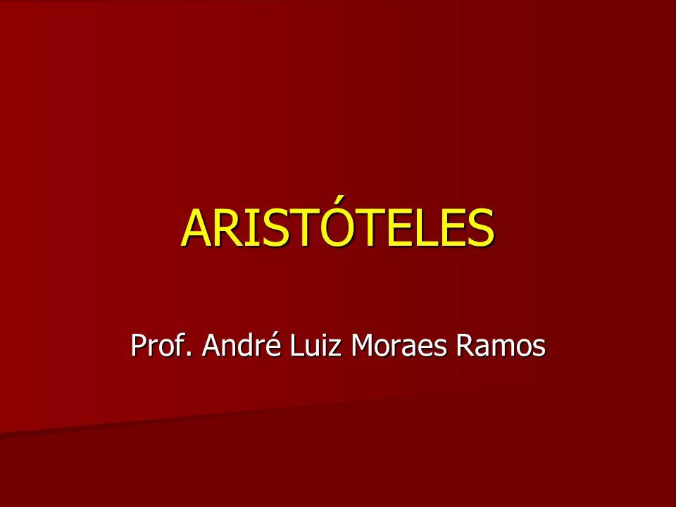 Prof. André Luiz Moraes Ramos