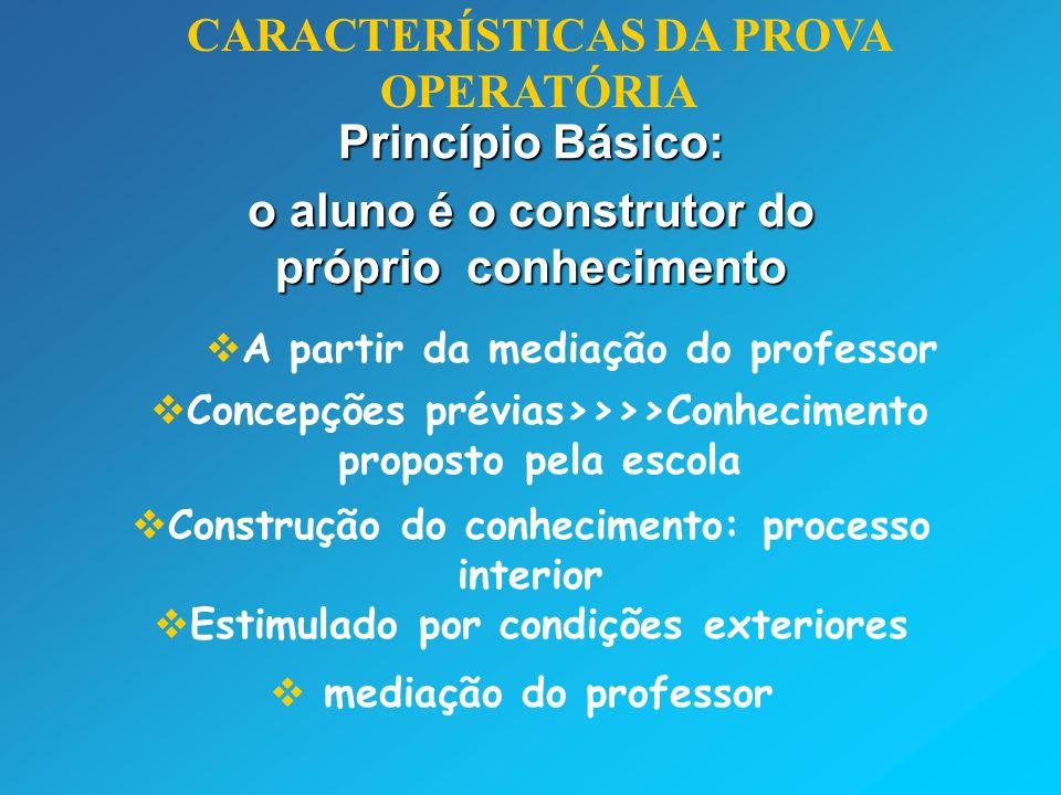 Princípio Básico: o aluno é o construtor do próprio conhecimento