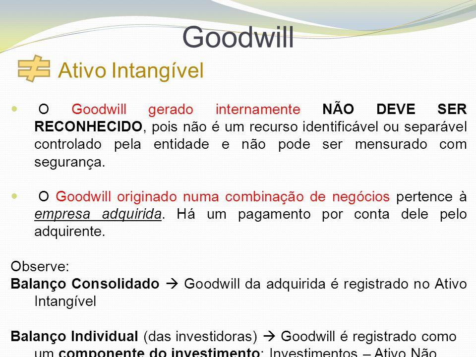 Goodwill Ativo Intangível