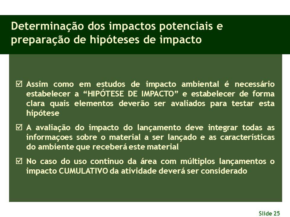 Determinação dos impactos potenciais e preparação de hipóteses de impacto