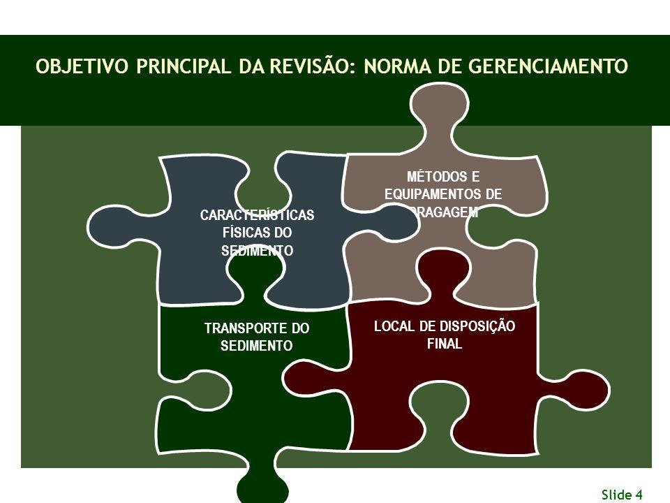 OBJETIVO PRINCIPAL DA REVISÃO: NORMA DE GERENCIAMENTO