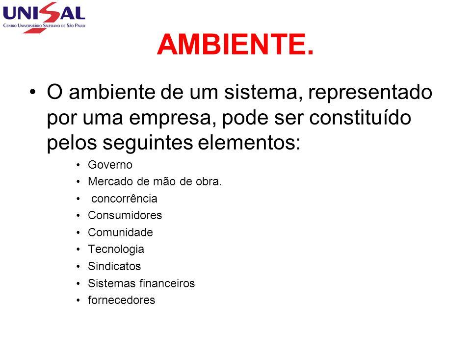 AMBIENTE. O ambiente de um sistema, representado por uma empresa, pode ser constituído pelos seguintes elementos: