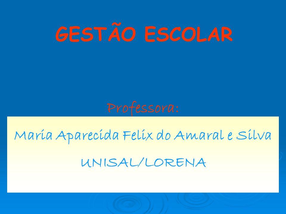 Maria Aparecida Felix do Amaral e Silva