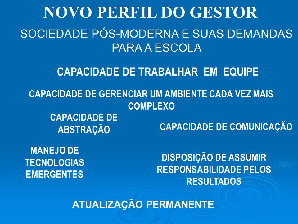 NOVO PERFIL DO GESTOR SOCIEDADE PÓS-MODERNA E SUAS DEMANDAS PARA A ESCOLA. CAPACIDADE DE TRABALHAR EM EQUIPE.