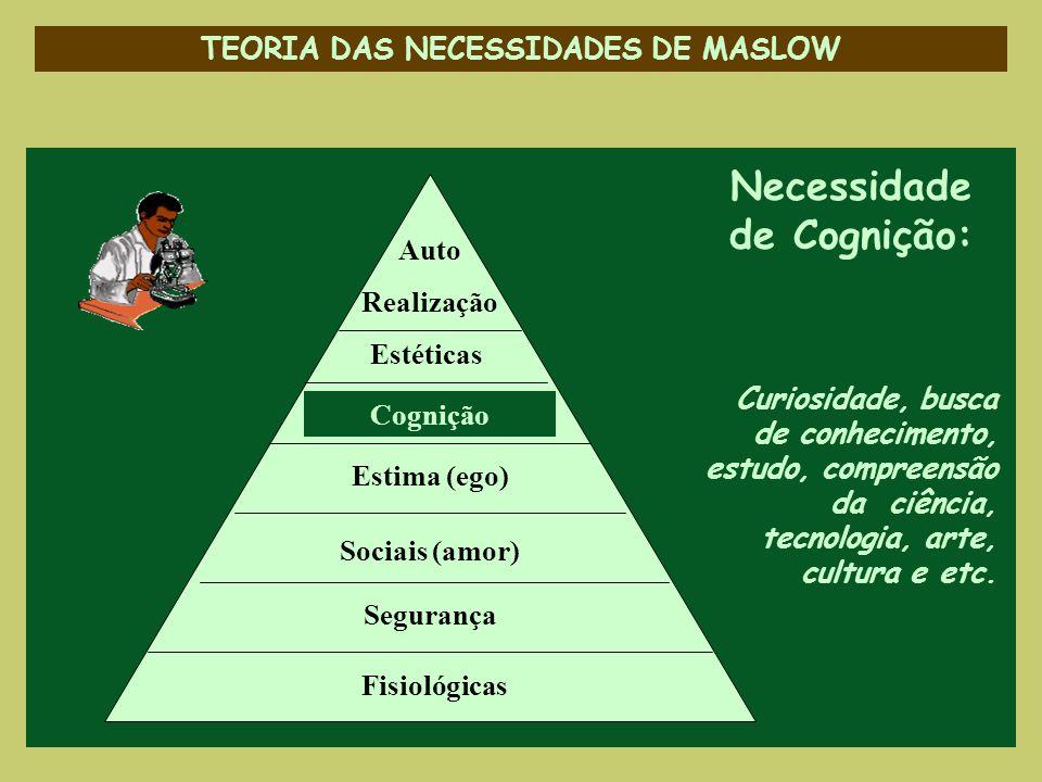 TEORIA DAS NECESSIDADES DE MASLOW Necessidade de Cognição: