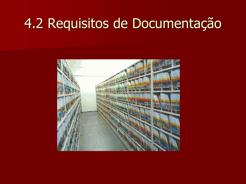 4.2 Requisitos de Documentação