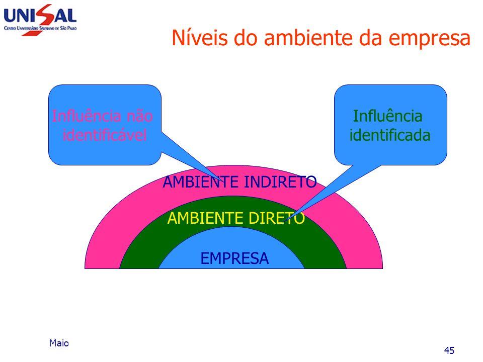 Níveis do ambiente da empresa
