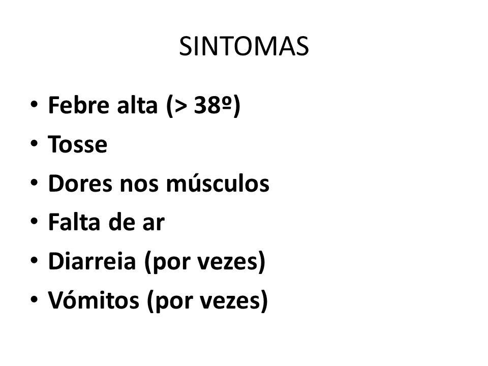 SINTOMAS Febre alta (> 38º) Tosse Dores nos músculos Falta de ar