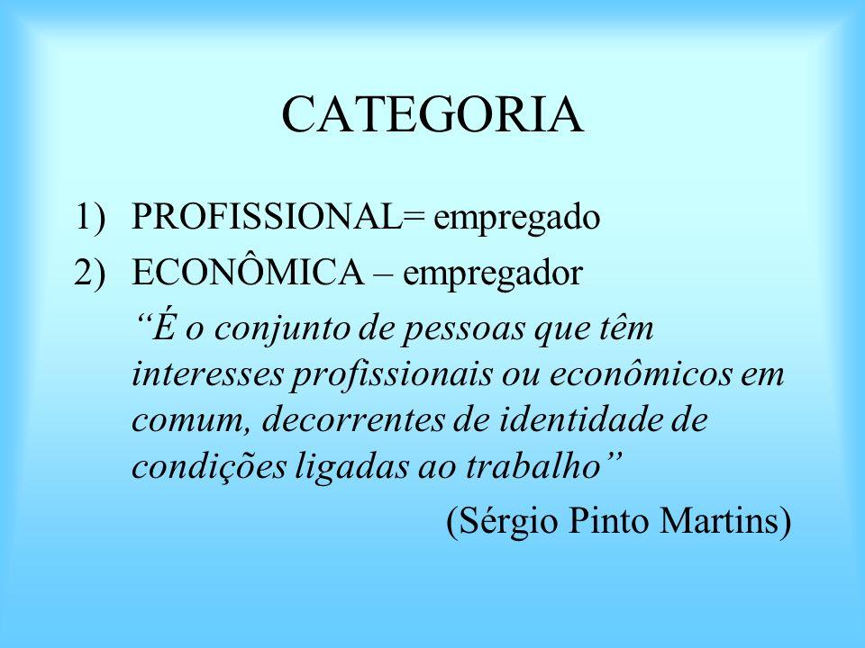 CATEGORIA PROFISSIONAL= empregado ECONÔMICA – empregador