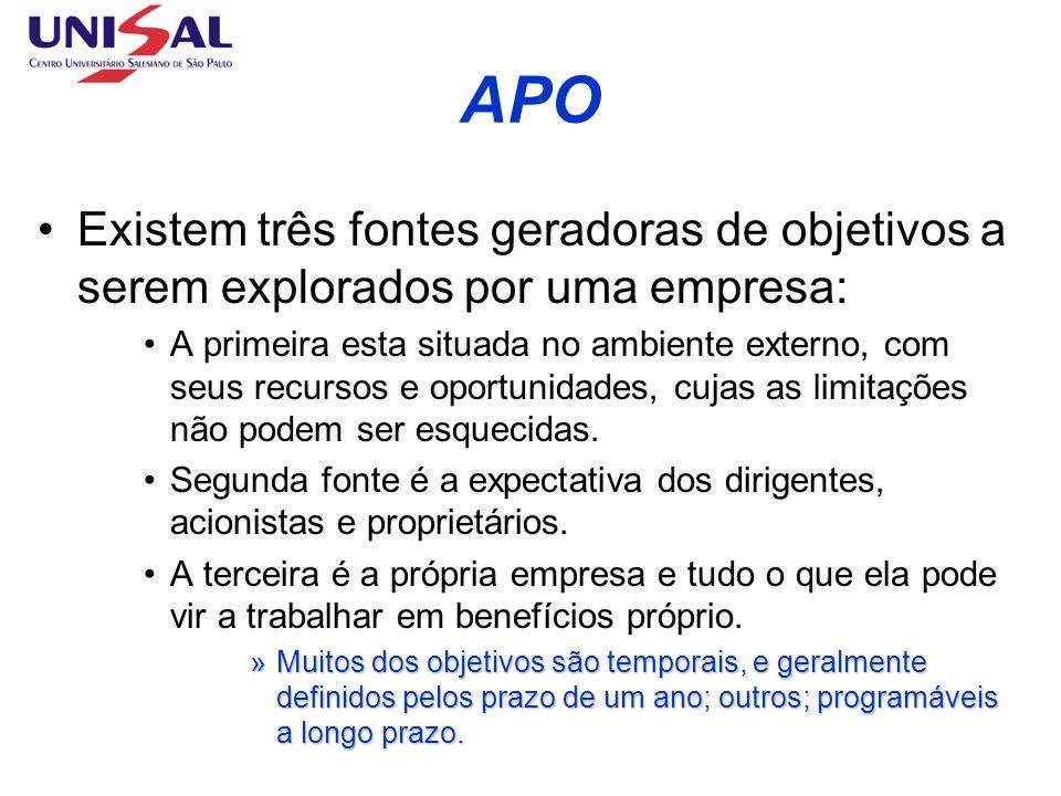 APO Existem três fontes geradoras de objetivos a serem explorados por uma empresa: