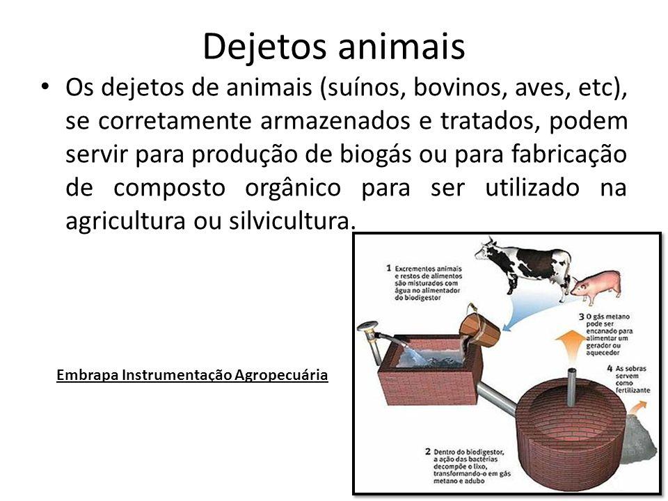 Dejetos animais