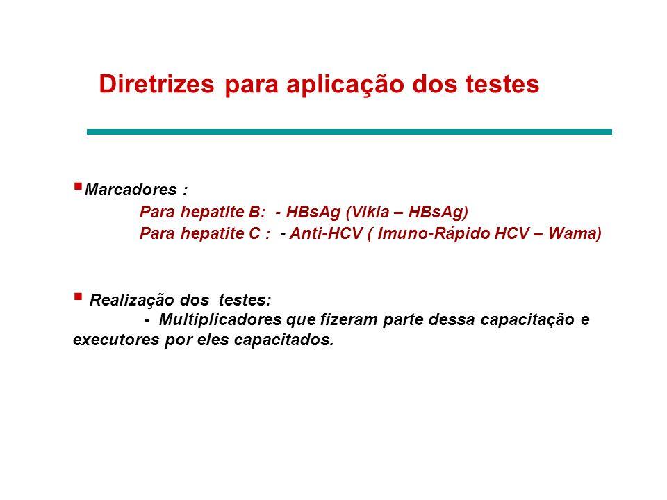 Diretrizes para aplicação dos testes