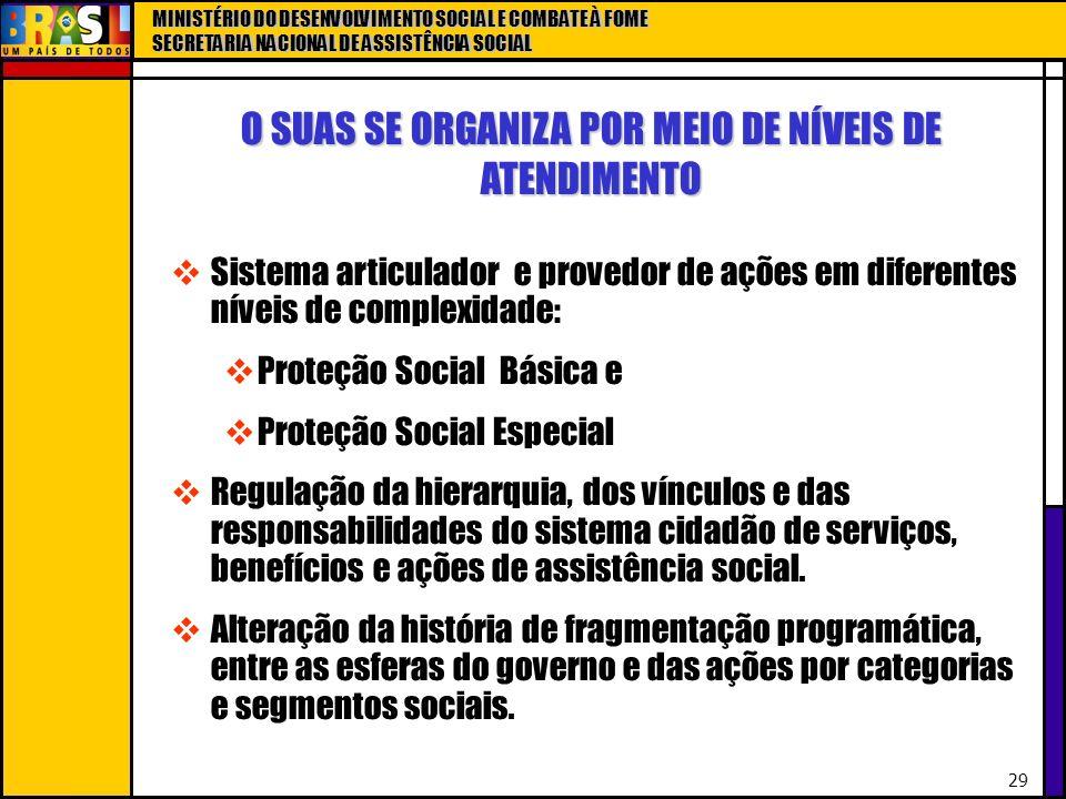 O SUAS SE ORGANIZA POR MEIO DE NÍVEIS DE ATENDIMENTO