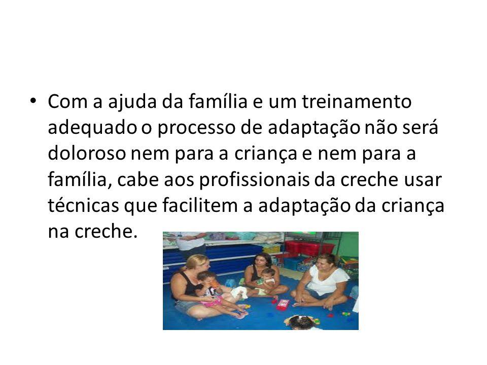 Com a ajuda da família e um treinamento adequado o processo de adaptação não será doloroso nem para a criança e nem para a família, cabe aos profissionais da creche usar técnicas que facilitem a adaptação da criança na creche.