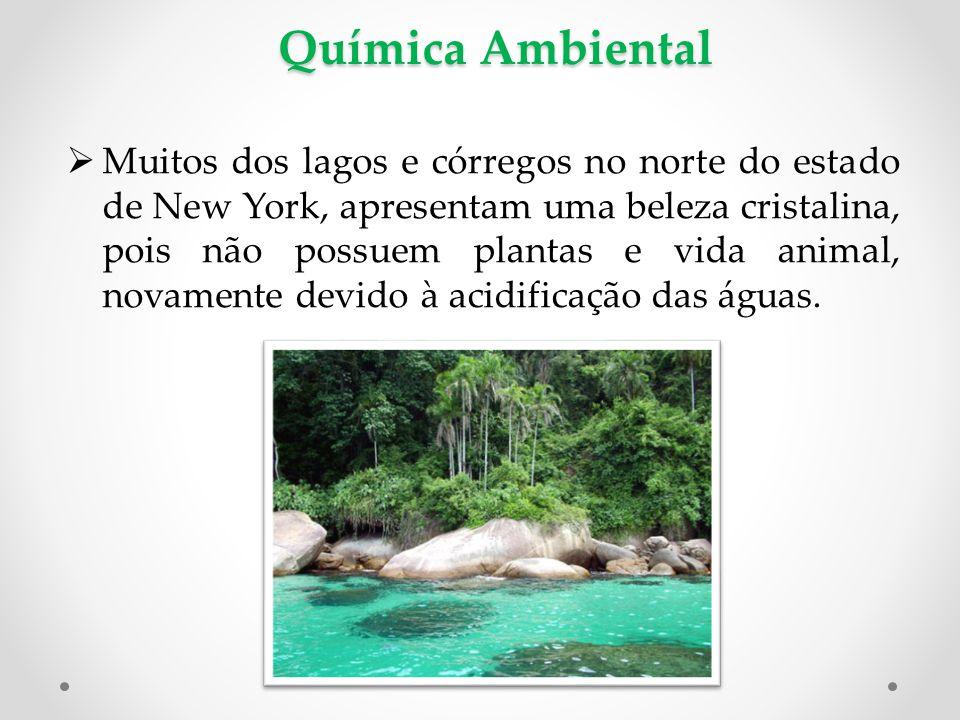 Química Ambiental