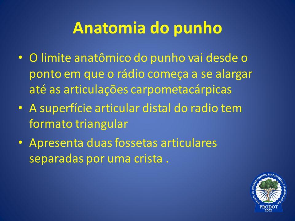 Anatomia do punho O limite anatômico do punho vai desde o ponto em que o rádio começa a se alargar até as articulações carpometacárpicas.