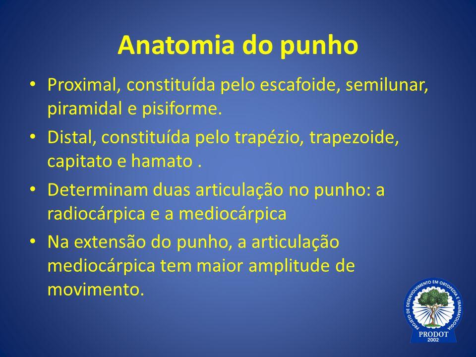 Anatomia do punho Proximal, constituída pelo escafoide, semilunar, piramidal e pisiforme.