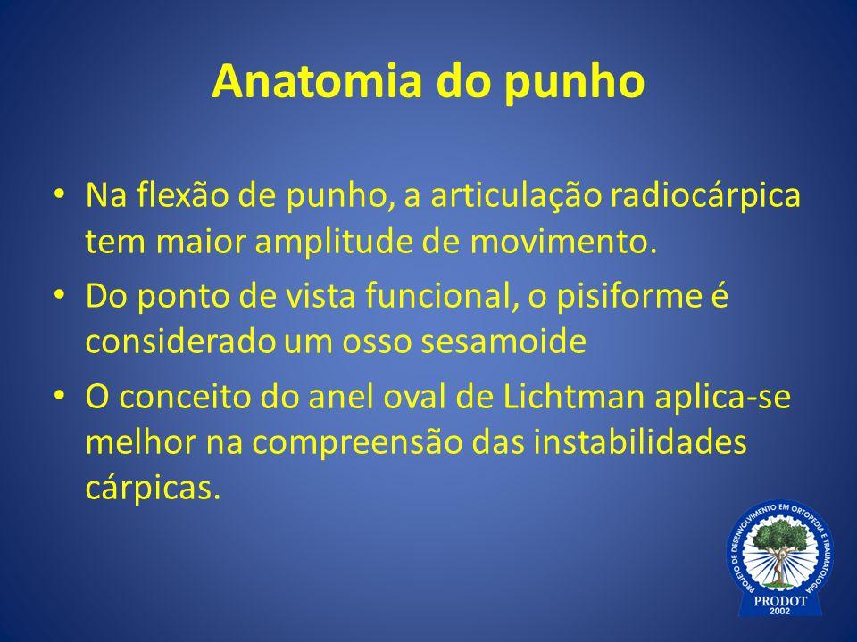 Anatomia do punho Na flexão de punho, a articulação radiocárpica tem maior amplitude de movimento.