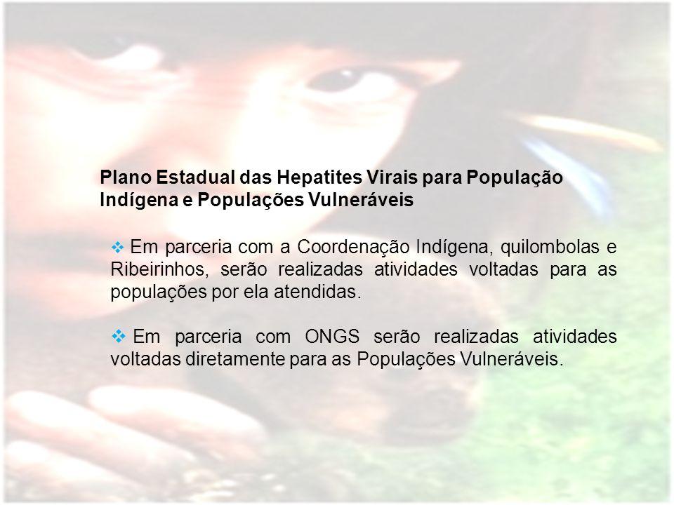 Plano Estadual das Hepatites Virais para População Indígena e Populações Vulneráveis