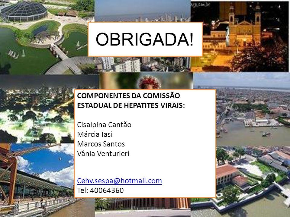 OBRIGADA! COMPONENTES DA COMISSÃO ESTADUAL DE HEPATITES VIRAIS:
