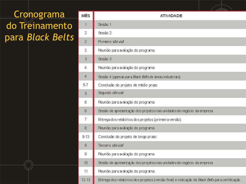 do Treinamento para Black Belts