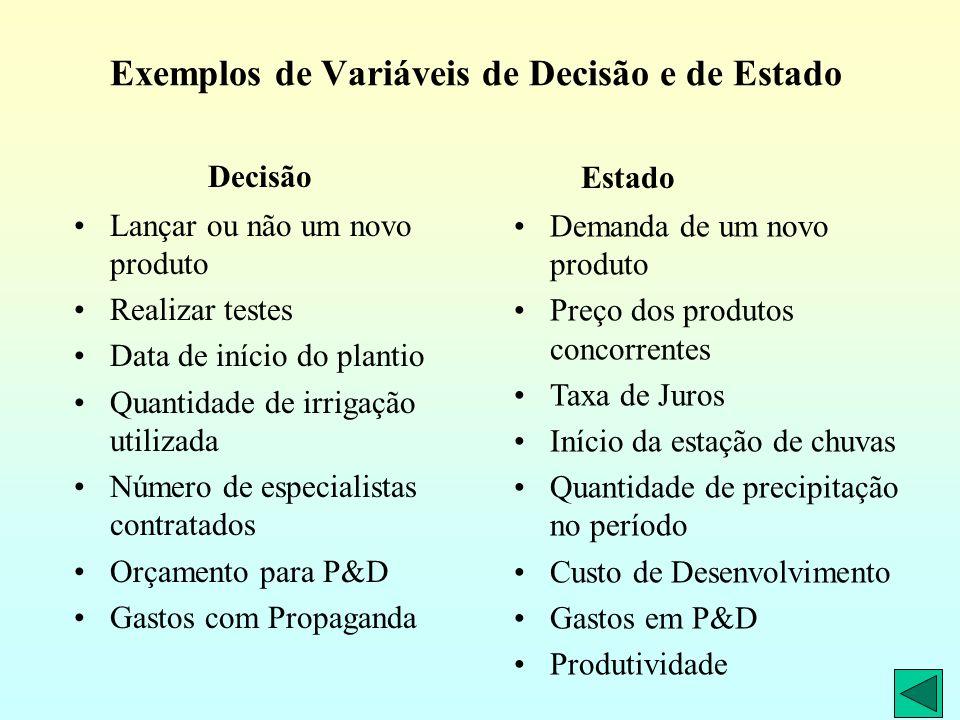 Exemplos de Variáveis de Decisão e de Estado